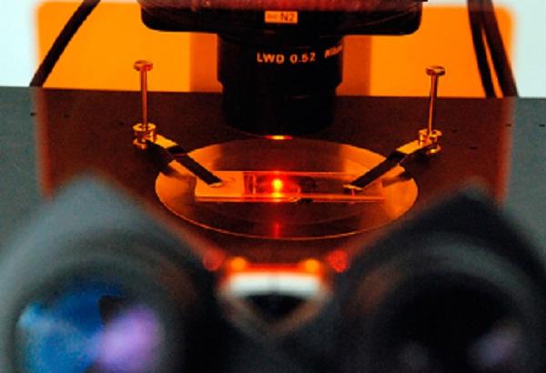 microscopio holográfico
